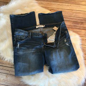 Torrid Distressed Bootcut; 16S